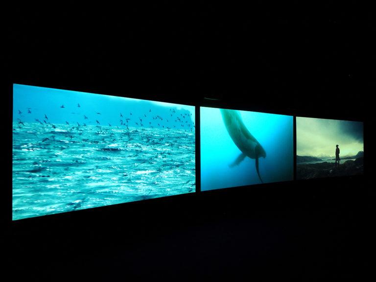 John Akomfrah Vertigo Sea installation image